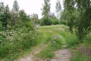 2006-06-27 Uppfarten i grönska