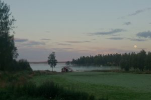 2015-08-30 Morgondis med fullmåne